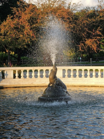 DZ sea lion fountain